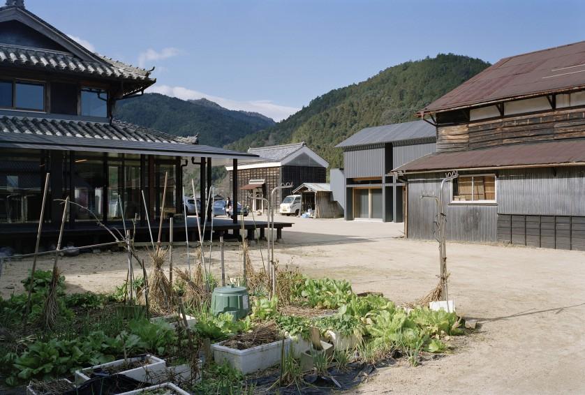 ©Takeshi Yamagishi 東側から前庭を見る
