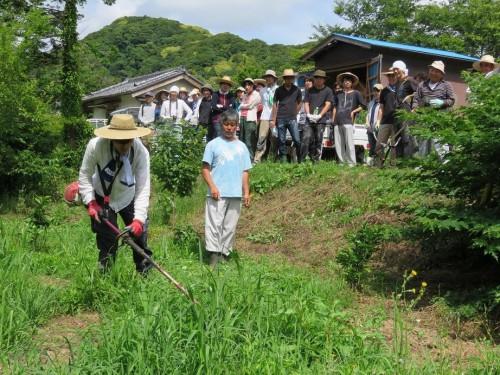 刈り払い機を操る手ほどきを受け、地元の草刈りを手伝う東京理科大建築学科の大学生たち。作業を通して交流と愛着、場所への理解が生まれます。