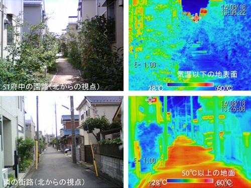 写真4:外部環境のサーモカメラ画像 2014年8月18日13時 日射を受けた近隣のアスファルト舗装は50℃以上 ソーラータウン府中のMRT(平均放射温度)が常に低く特に樹木の日射遮蔽効果が高くMRTが8℃異なった。