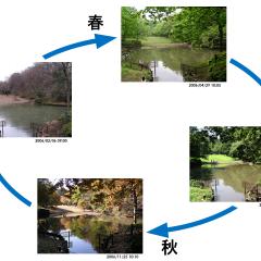 自然の律動・放調と環境デザイン