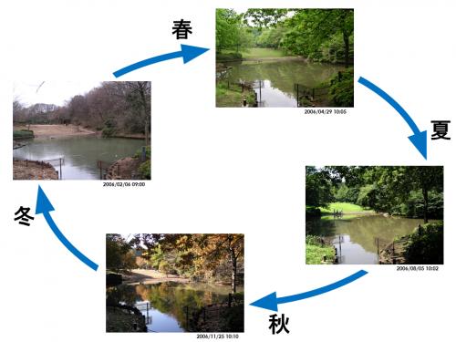 図1 宇宙・地球環境のリズムがつくる身近な自然のリズム