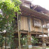バンブー・アーキテクチャー——竹建築の未来